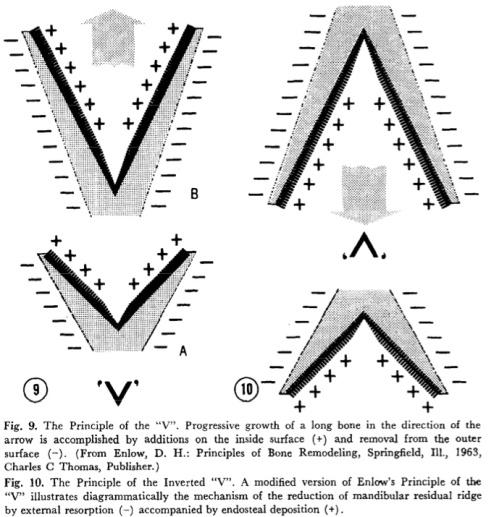 JPD 1971 Vol.26-4