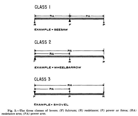 JPD 1966 Vol.16-2